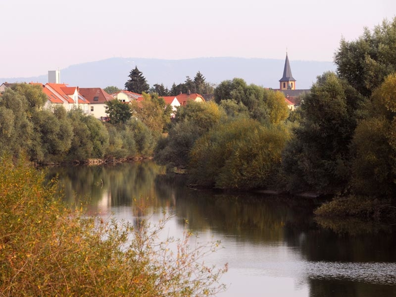 Ilvesheim 2
